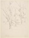 Image of [Landscape with Trees]